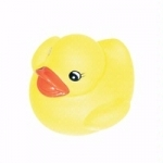 Playgro Bath Duck toy