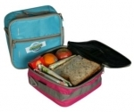 Fridge To Go Small Lunch cooler