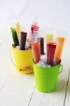 Reusable zip top ice pop pouch